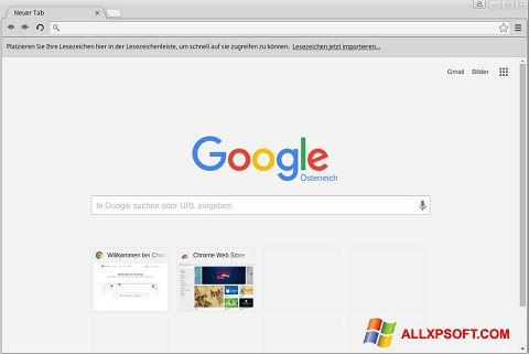 Скріншот Google Chrome для Windows XP