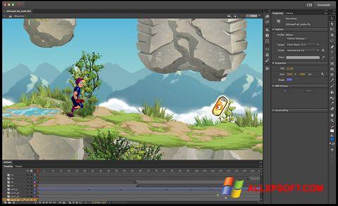 Скріншот Adobe Flash Professional для Windows XP